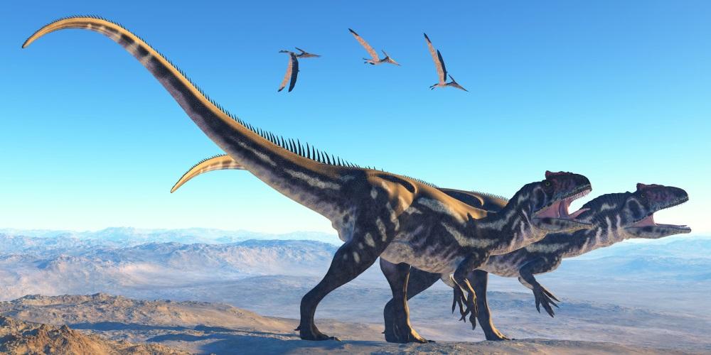 アロサウルス(Allosaurus)   恐...