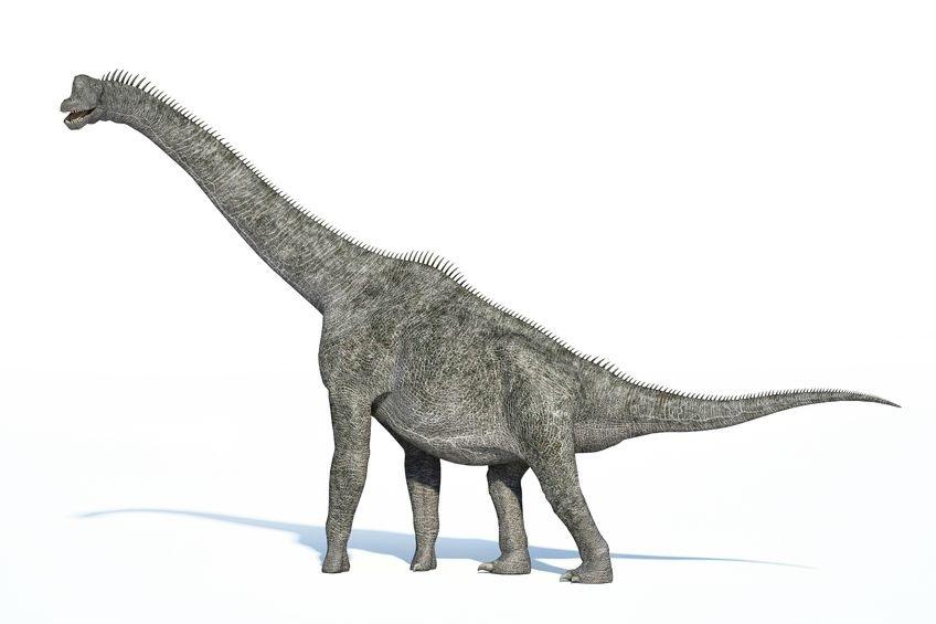 ブラキオサウルス(Brachiosaurus) | 恐竜図鑑