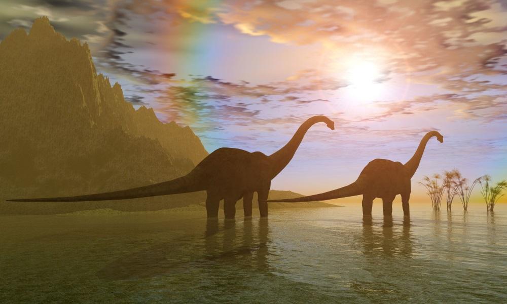 ディプロドクス                        Diplodocus