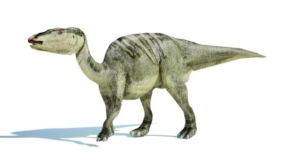 ティラノサウルスとエドモントサウルス