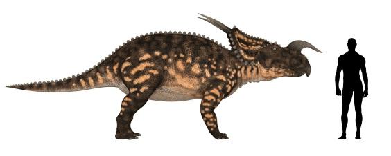 エイニオサウルスと人