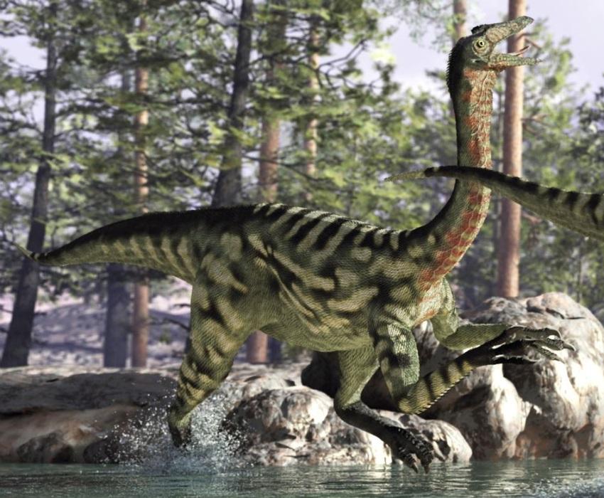 ガリミムス(Gallimimus) | 恐竜図鑑