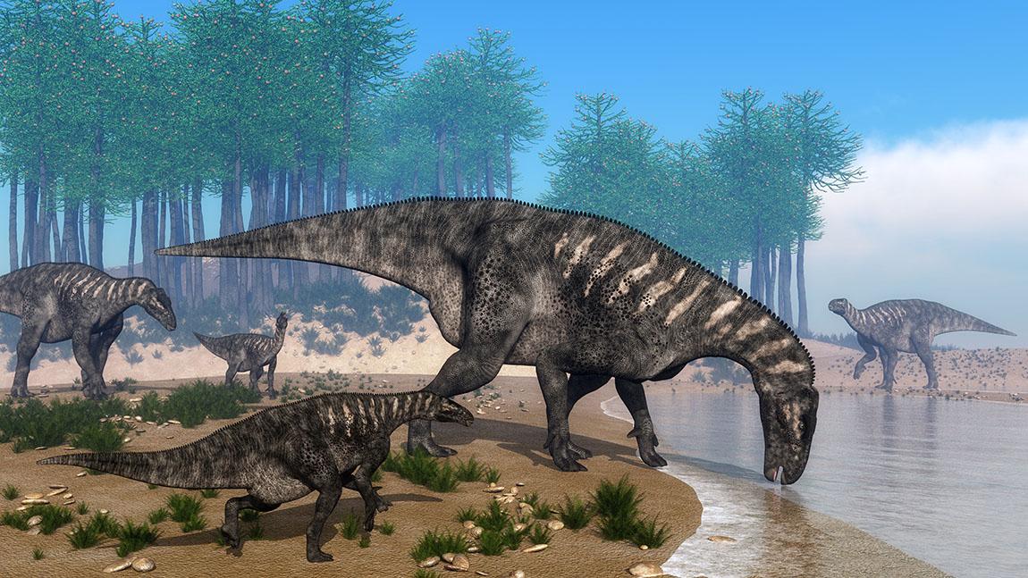 イグアノドン(Iguanodon)   恐竜図鑑