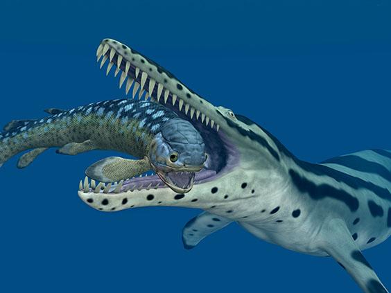 クロノサウルスの画像2