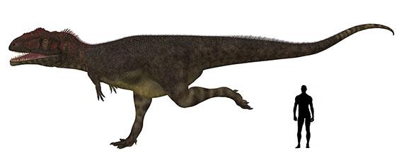 マプサウルス                        Mapusaurus