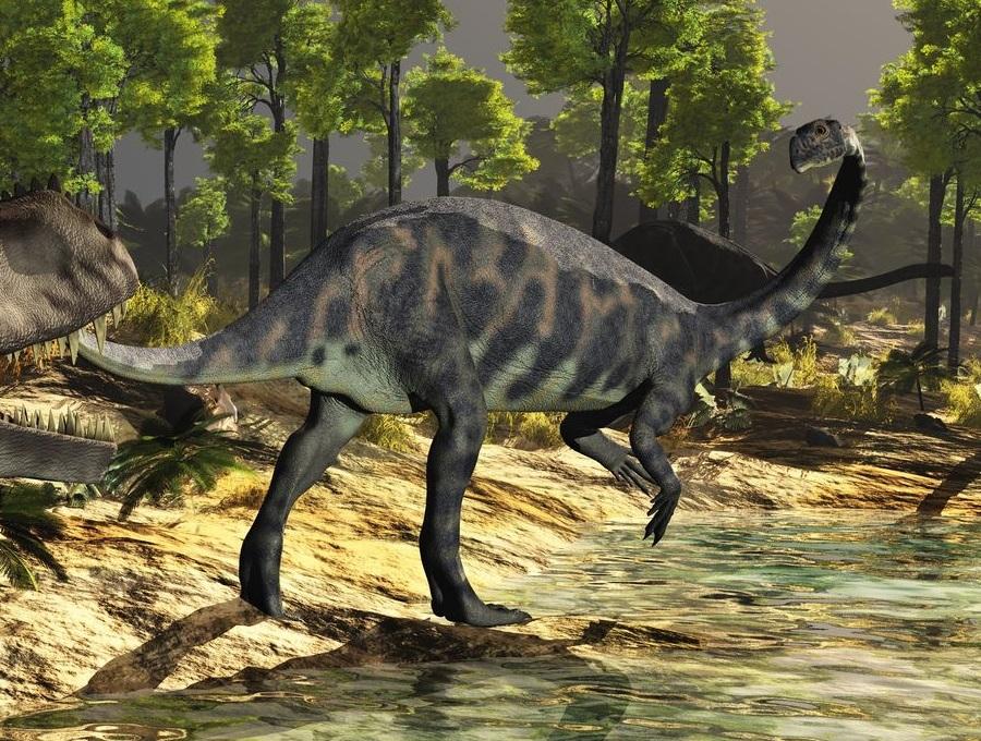 マッソスポンディルス(Massospondylus)   恐竜図鑑