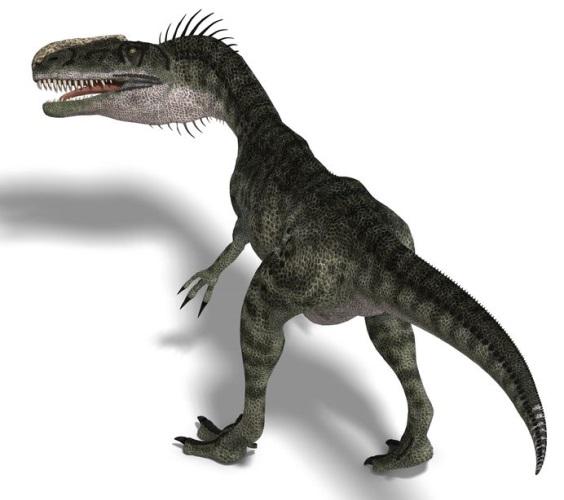 モノロフォサウルスの画像 科名 アロサウルス科 分類 獣脚類、獣脚亜目、テヌタラ類、カルノサウル